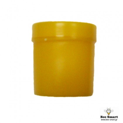 Πλαστικό βαζάκι Βασιλικού Πολτού 25gr.